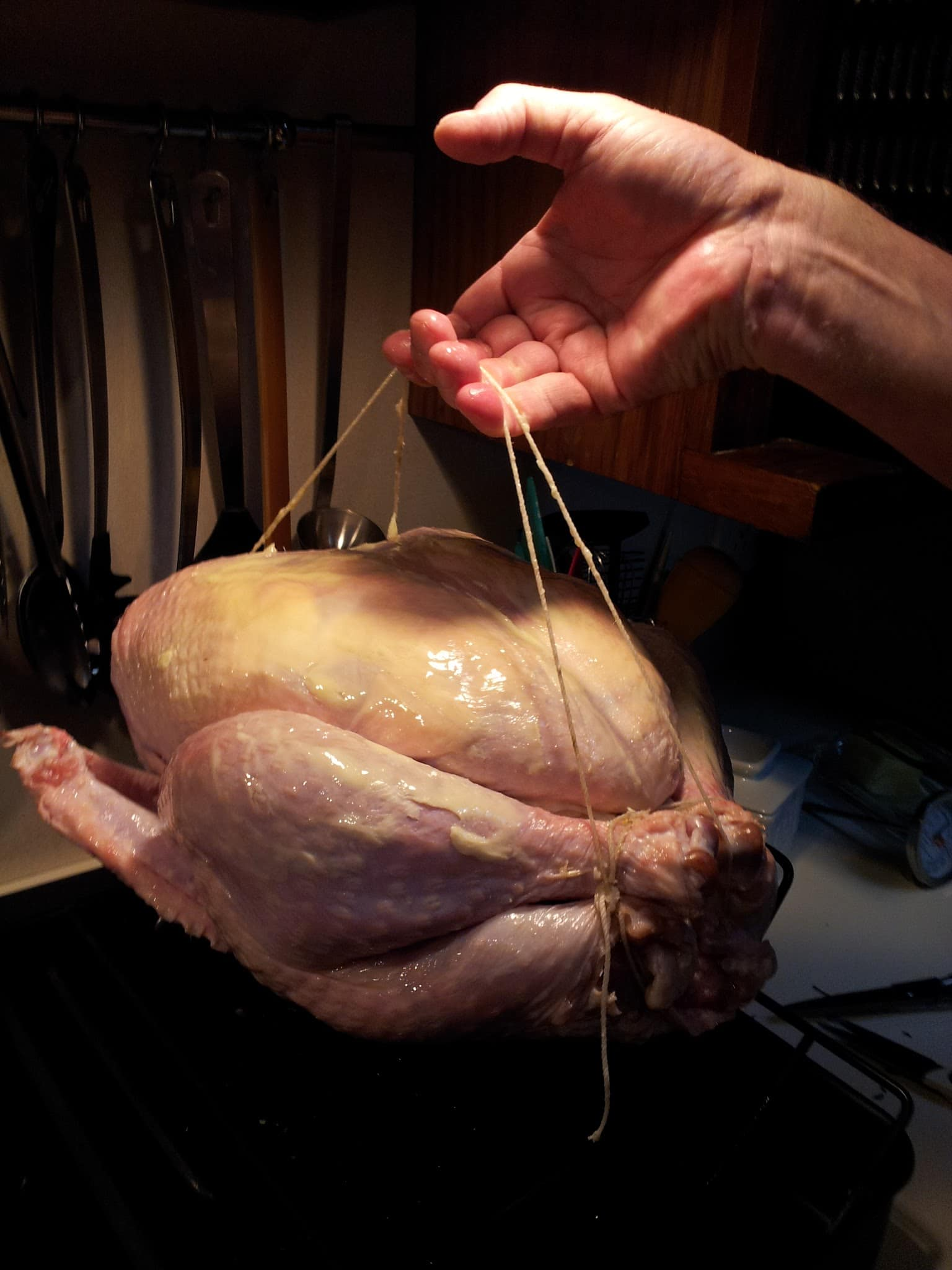 that's how you truss a turkey
